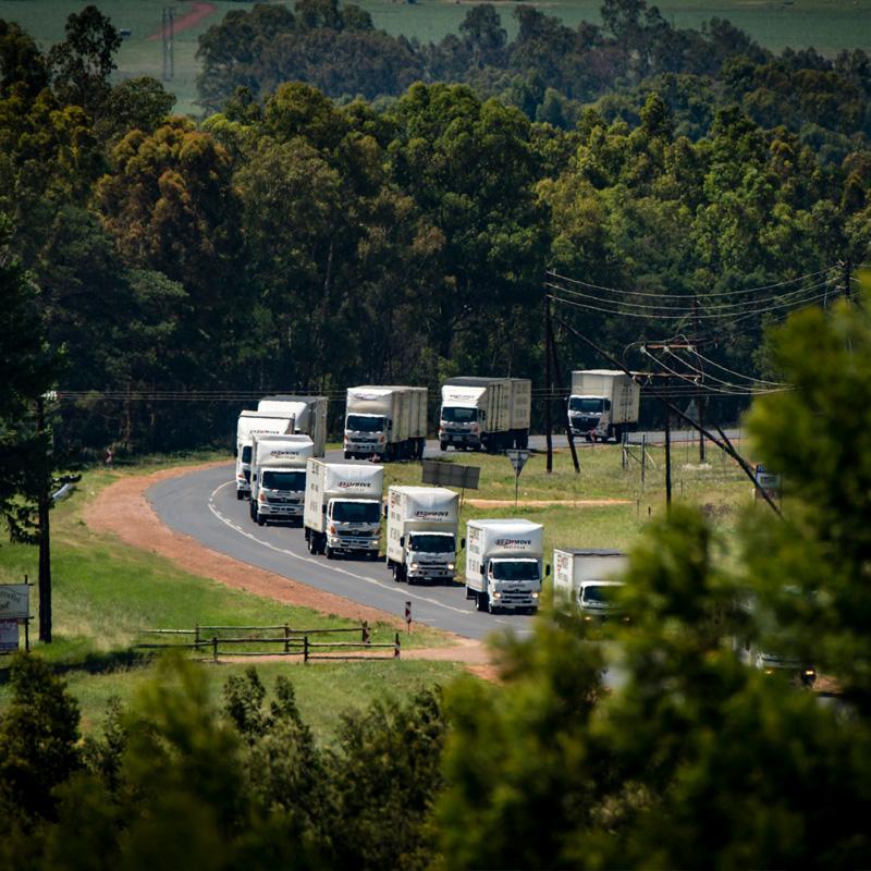 eezi move moving company